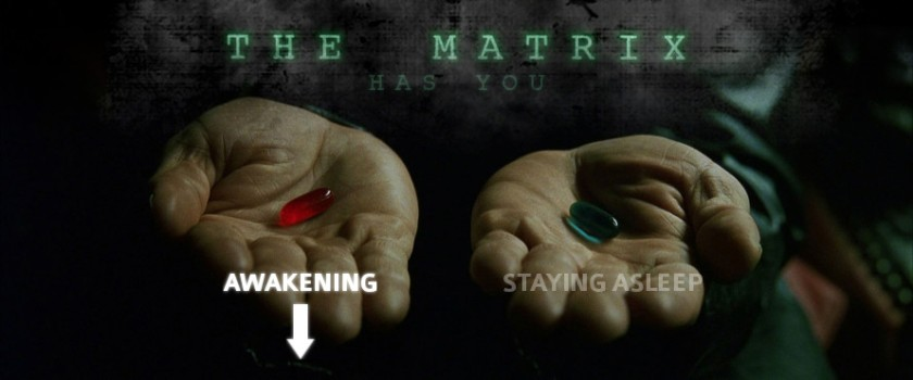 The Matrix (Awakening)
