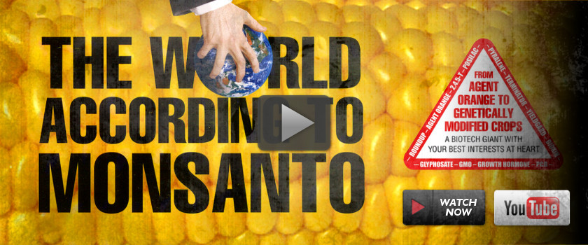 The World According to Monsanto (2008)